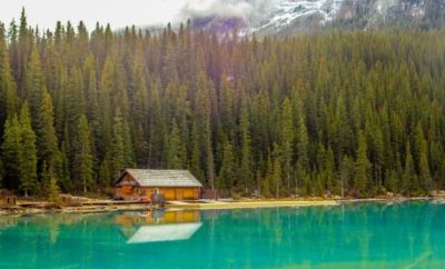 Benefits of Cabin Rental for Vacation